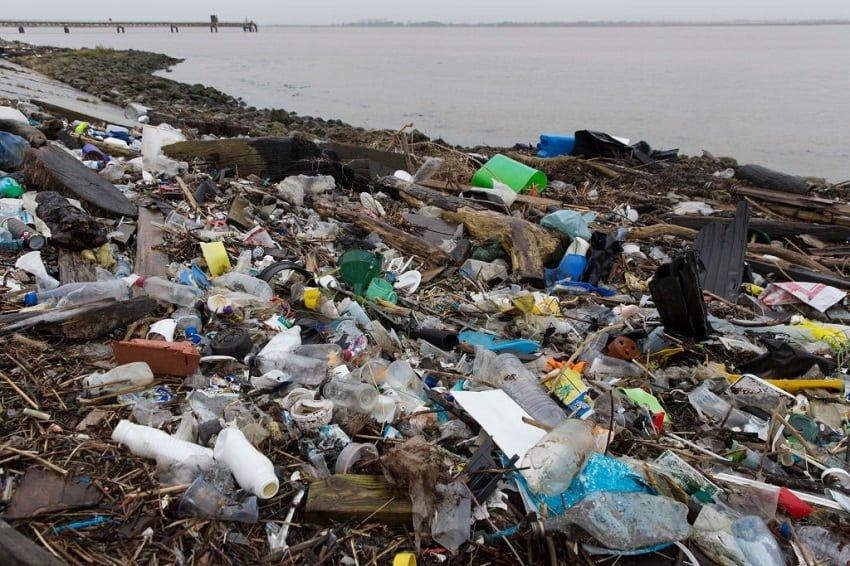 uchenye prizyvayut umenshit kolichestvo plastika v okeane min